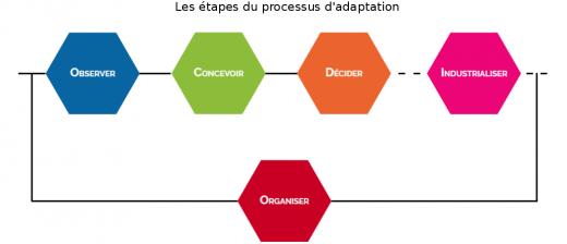 processus_dadaptation_avec_titre
